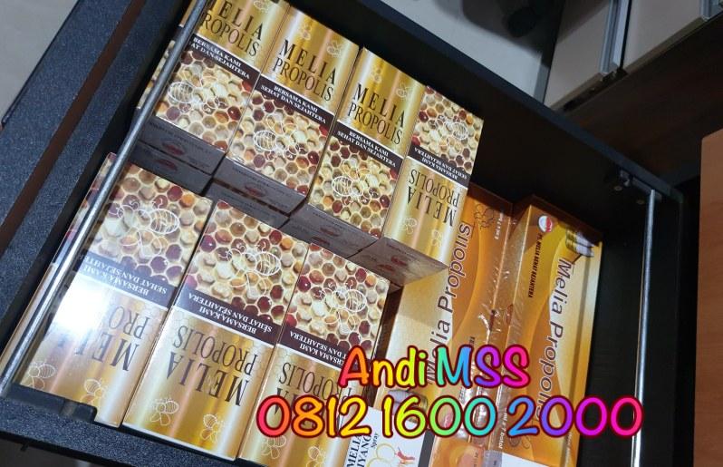 Agen Resmi Melia Propolis Semarang 081216002000