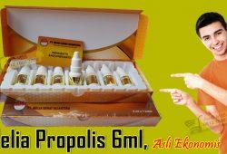 Kemasan Melia Propolis 6ml Asli Original